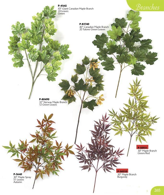 Artificial Branches Stems Twigs To Accent Your Unique Decor - Norway maple vs sugar maple