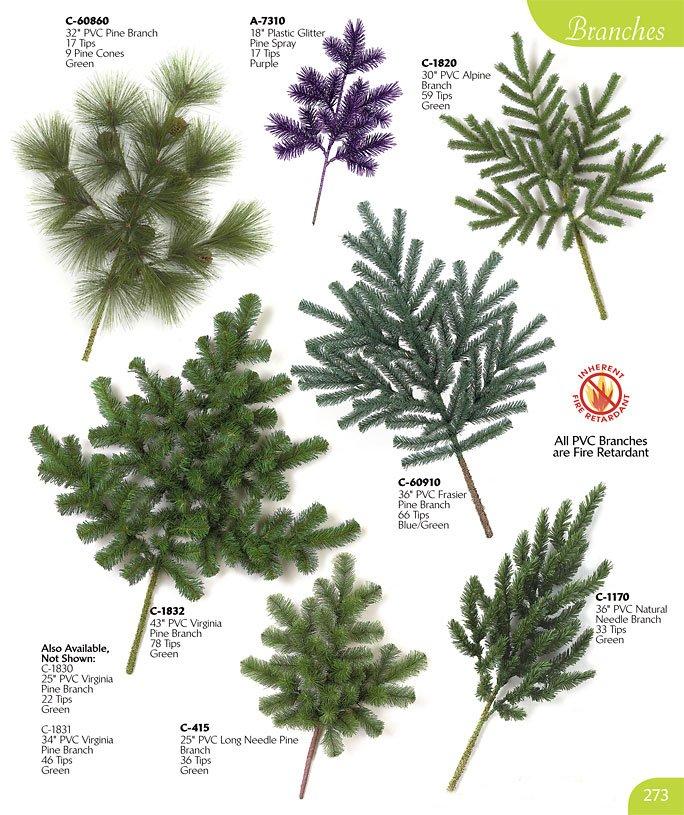 Pine Tree Branch Texture Fir Tree Branch Texture