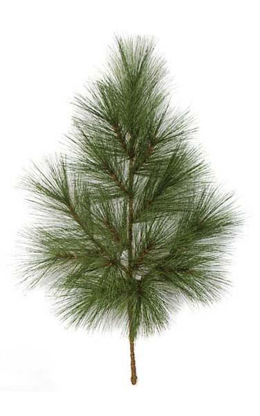 Earthflora Decorative Branches 40 Ponderosa Pine Branch Ifr