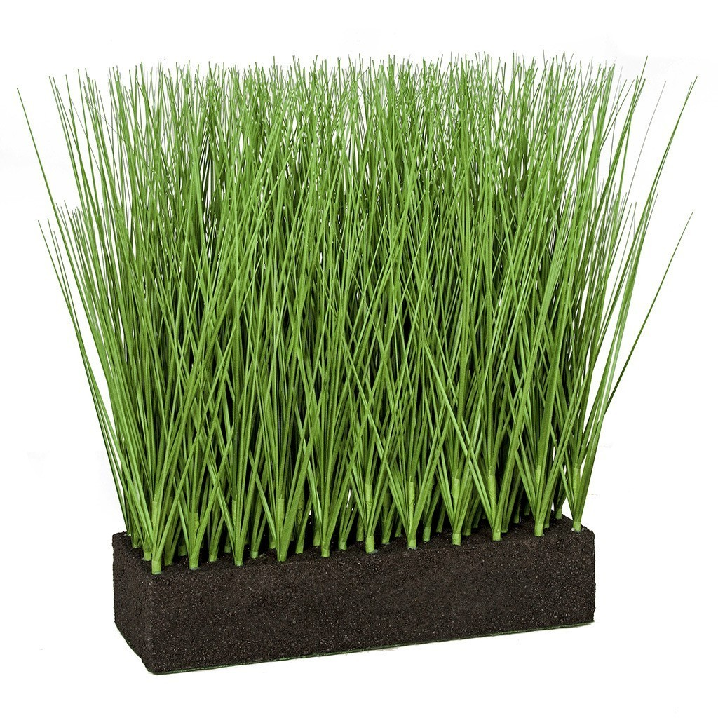 Earthflora S Planted Rectangle