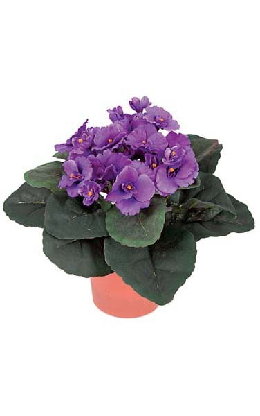 Earthflora Artificial Flowering Collection 10 Potted African Violet Purple