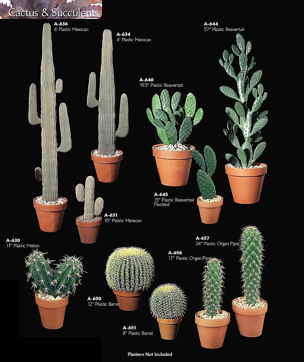 Artificial Plastic Cactus Plants Amp Rocks