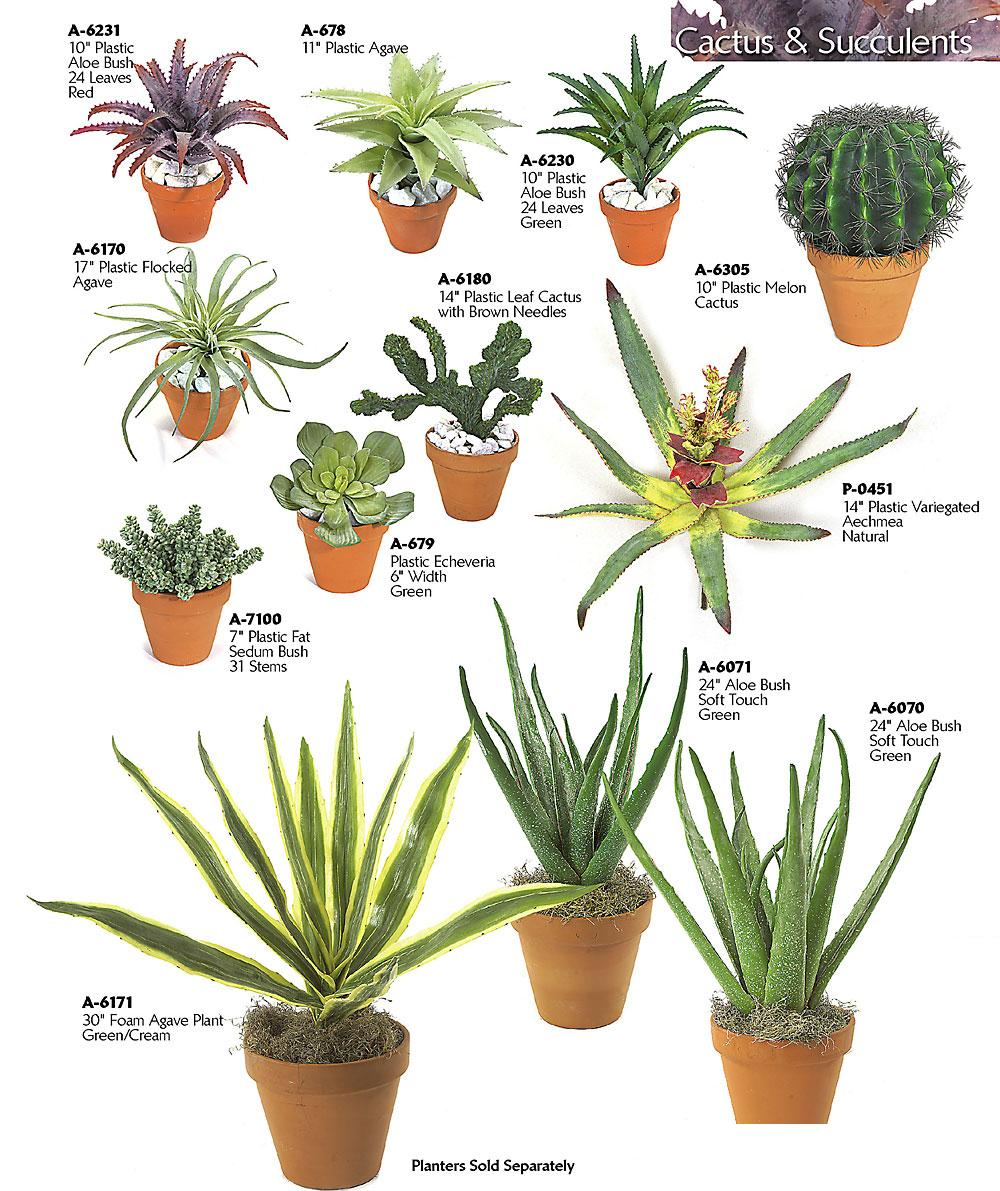 Artificial plastic cactus plants rocks - Home plants types ...