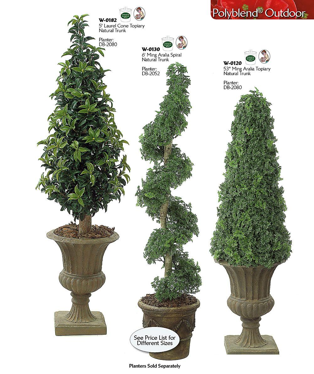 Laurel cone topiary for Garden topiary trees