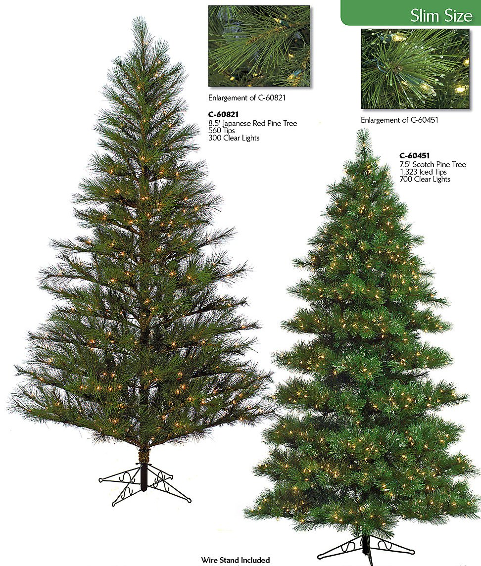 Tall Slim Christmas Trees