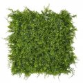 20 Inch X 20 Inch Mixed Foliage Fern Mat
