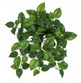 14 Inch Artificial Variegated Pothos Bush X 9