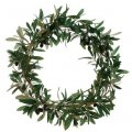 "20"" Olive Wreath  Green Burgundy"