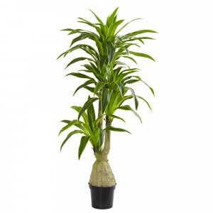 6.5 Foot Dracaena Artificial Plant