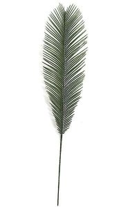 "36"" Outdoor Cycas Palm Branch - 7.25"" Width - Green"