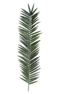 "66"" Giant Palm Branch - 52 Leaves - 18"" Width - Green"