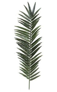 "88"" Giant Palm Branch -  22"" Width - Green"