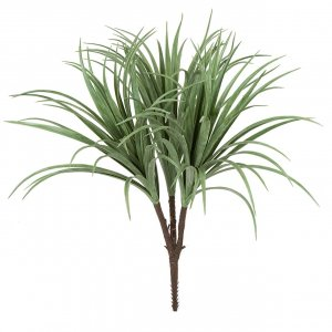 28 Inch Liriope Bush X 3 - Cream/Green