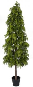 6 FOOT Outdoor NATURAL TOUCH POTTED HINOKI CYPRESS TREE SHRUB