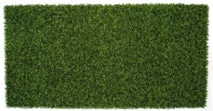 8.5' L X 51- 1/8 Inch  UV Outdoor Boxwood Mat Roll