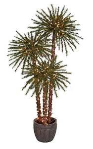 4', 5', 6' Royal Palm Christmas Tree - 500 Clear Lights - Decorative Pot
