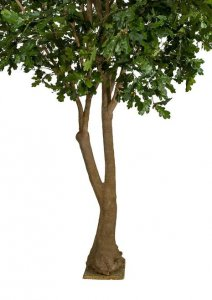 12 FOOT H X 11 FOOT W OAK TREE ON FIBERGLASS TRUNK AND BASE