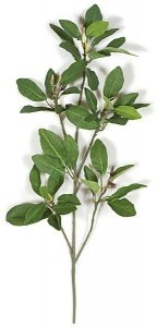 Earthflora's 24 Inch Mangrove Branch (Sold Per Piece) Ifr Or Regular