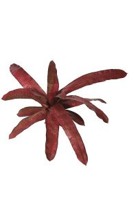 "14"" Bromeliad - Natural Touch -15 Leaves - Dark Red/Mauve"
