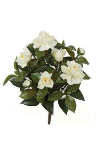 "15"" Gardenia Bush - 6 White Flowers - 2 White Buds - Bare Stem"