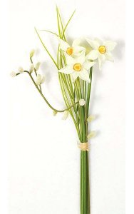Narcissus Bundle - Pussy Willow and Grass - 3 White/Yellow Flowers