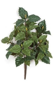 "19"" Hibiscus Bush - 51 Green Leaves - 5"" Stem - 13"" Width"