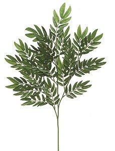 Earthflora's 26 Inch Locust Branch (Sold Per Piece) Regular Or Ifr