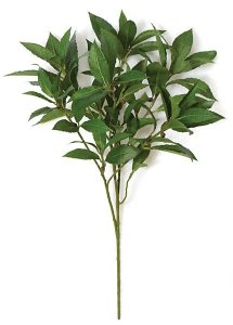 Earthflora's 20 INCH LAUREL LEAF SPRAY (SOLD PER PIECE)