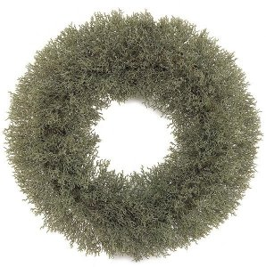 A-4005 Earthflora's 19 Inch Moss Wreath With Foam Base