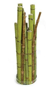 "26"" Bamboo Decorative Container in Glass Stand - Green"