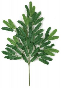 "27"" Mimosa Branch - 54 Green Leaves - FIRE RETARDANT"