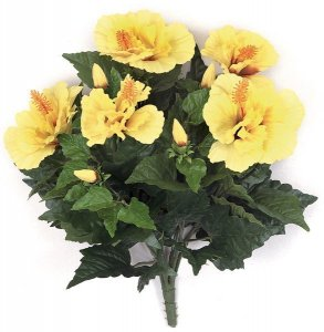Earthflora's 14 Inch Ifr Hibiscus Bush - Yellow