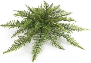 "30""  Outdoor Polyblend Ruffle Fern Cluster - 30 Green Leaves - 30"" Width - Bare Stem"