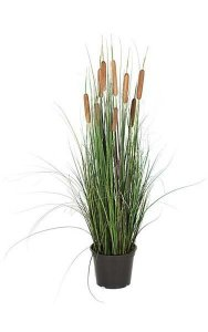 "36"" PVC Cattail Grass - Brown/Green - Weighted Base"