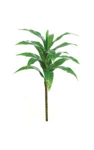 "36"" Soft Touch Dracaena Tree - 17 Green Leaves - Bare Stem"