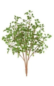 "38"" Birch Bush - 3 Stems - Light Green - 24"" Foliage Height - 20"" Width"