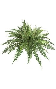 "42"" Artificial Boston Fern - 24"" Height - Green Fronds - Bare Stem"