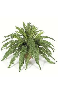 "42"" Boston Fern Bush - 55 Green Leaves - 42"" Width- FIRE RETARDANT"