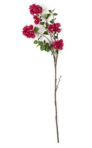 "44"" Bougainvillea Stem - 5 Flowers - 23"" Stem"