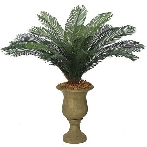 "A-0088  44"" Cycas Palm Cluster - 18 Large Green Fronds - 68"" Width - Tutone Green"