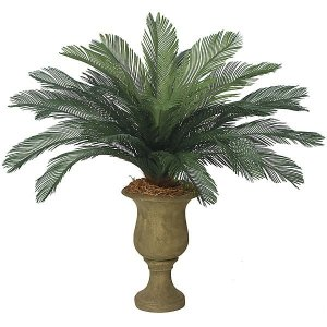"A-0080  44"" Cycas Palm Cluster - 24 Large Fronds - 68"" Width - Tutone Green"