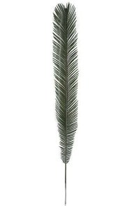 "48"" Plastic  Cycas Palm Branch - Outdoor UV Protected  - Green"