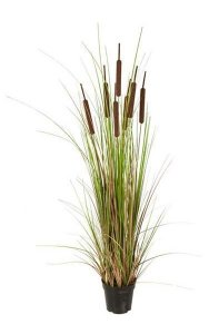 "48"" PVC Cattail Grass Bush - 7 Brown Cattails - Brown/Green"