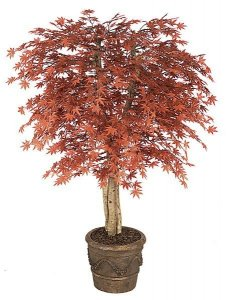 5' Outdor Japanese Maple Tree - Natural Trunks - 1,512 Leaves