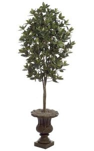 5.5' Azalea Leaf Tree - Natural Trunk - Green - Weighted Base