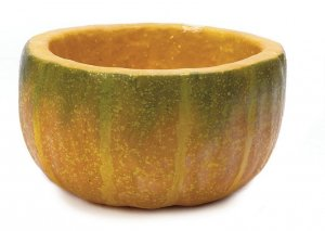 Earthflora's 5 Inch Pumpkin Pot