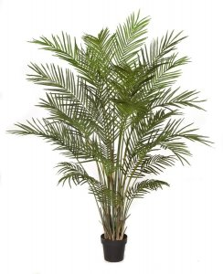 6' Areca Palm Tree - 30 Fronds - Weighted Base
