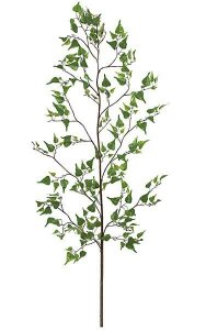 6' Birch Branch - 211 Green Leaves - 56 Green Buds - Bare Stem