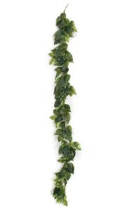 6' Pothos Garland - Soft Touch - Green/Cream