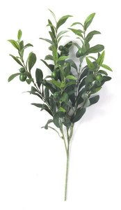 Earthflora's 23 Inch Olive Branch With Olives (Sold By The Dozen)